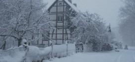 Zima w obiektywie