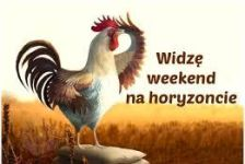 kogut-weekend