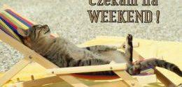 Ostatni normalny weekend tego roku stoi przed nami. Adwent nadchodzi.